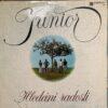 JUNIOR CZECH 70'S PROG ROCK FUZZ HIP-HOP SAMPLES HEAR LISTEN MP3